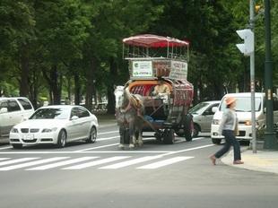 Sapporo-04.JPG