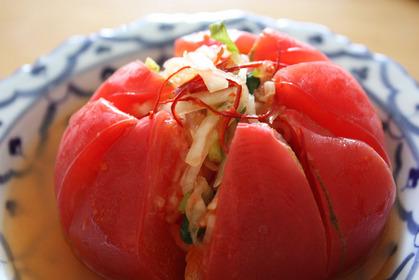 2010-08-11-Tomato1_1932.JPG