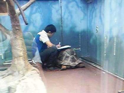 2011-10-31-bukuro_160440.jpg
