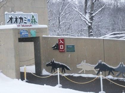 2011-11-22_OoKami.JPG