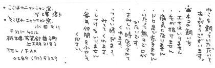 2013-02-28-Kyoto_KokohoreSokohore.jpg